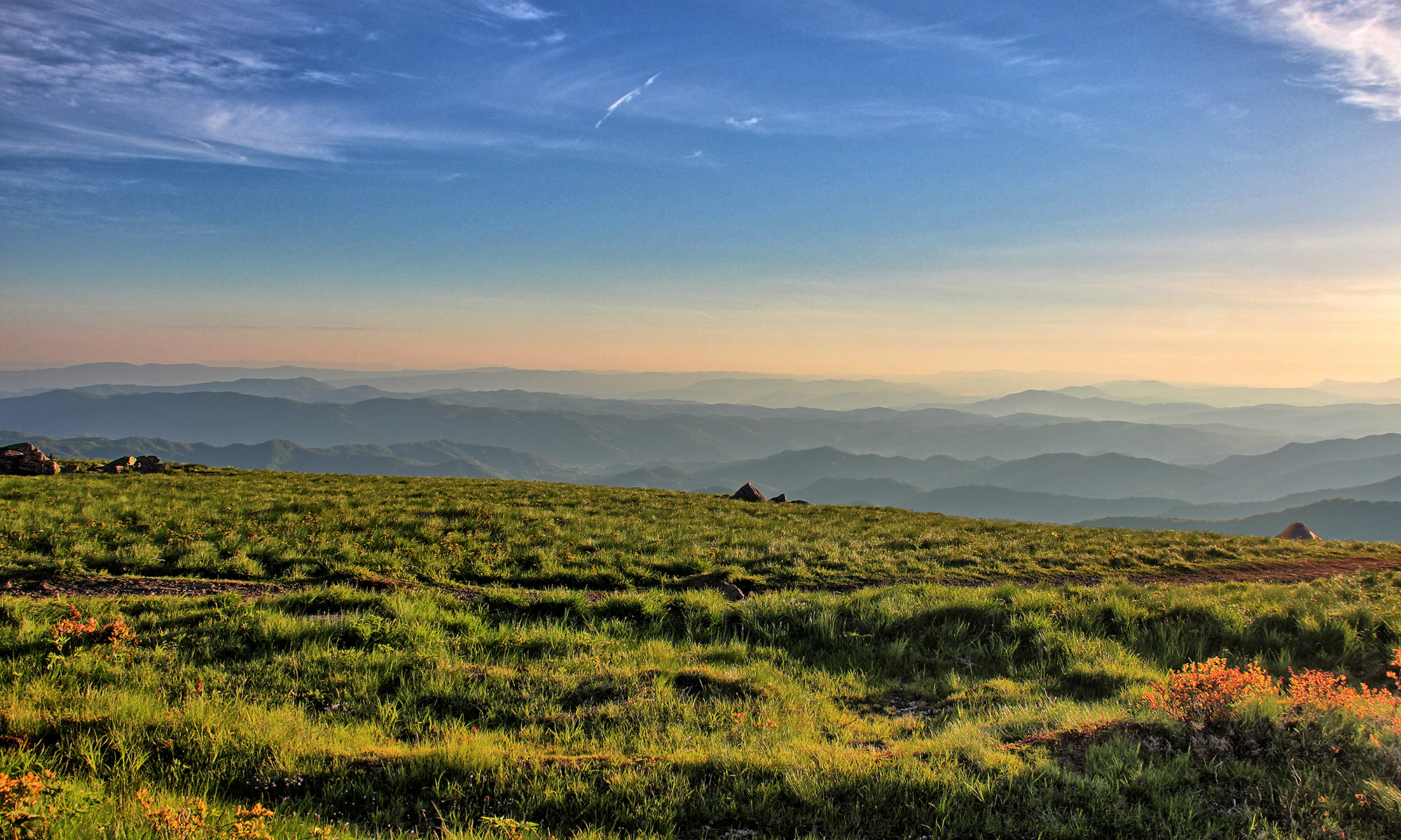 Round Bald Roan Mountain