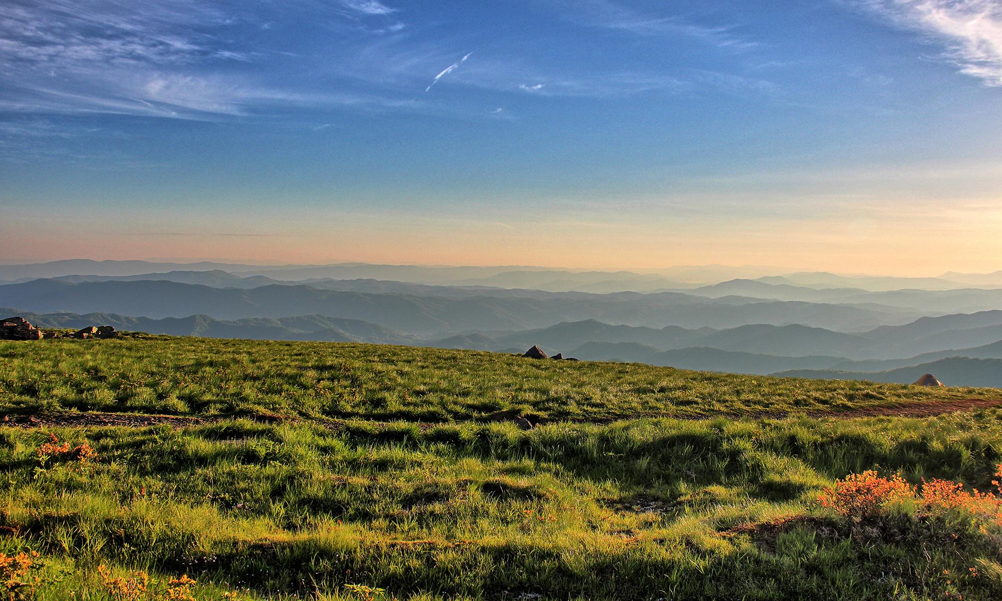Round Bald Roan Mountain